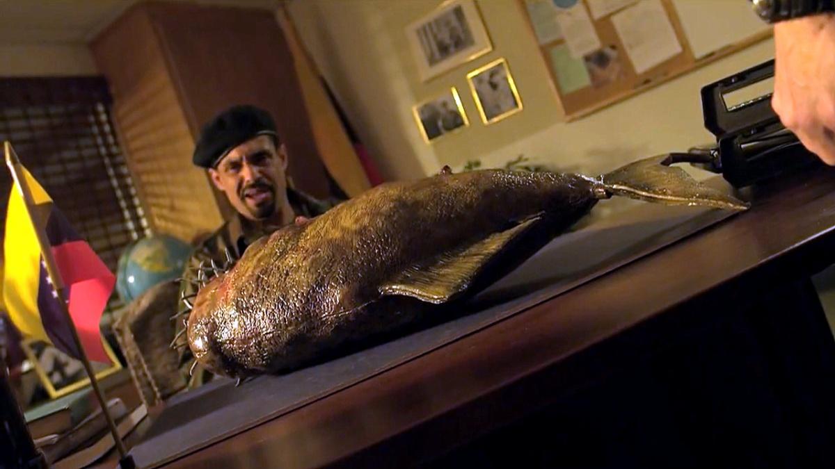 Mega Piranha 14 (Saint Pauly WTF