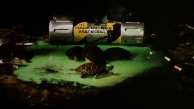 Teenage Mutant Ninja Turtles 20 (WTF Saint Pauly)