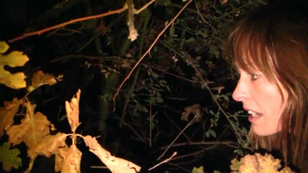 Willow Creek 13 (Saint Pauly Watch the Film WTF)