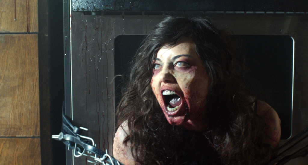 Life After Beth 14 (Watch the Film WTF Saint Pauly)