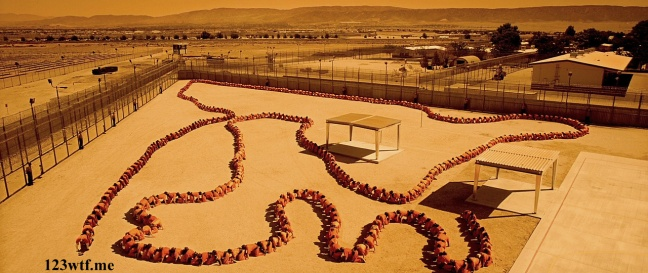 Human Centipede 3 28 SC Got my back (WTF Watch The Film Saint Pauly)