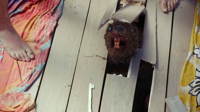 Zombeavers 43 (WTF Watch The Film Saint Pauly)