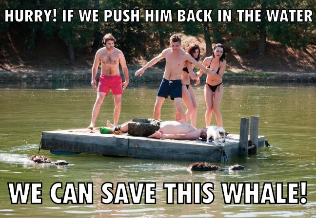 Zombeavers 49 Meme Whale(WTF Watch The Film Saint Pauly)