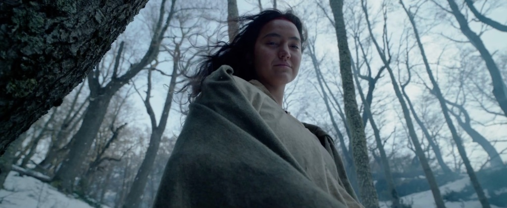 The Revenant 07 (WTF Watch The Film Saint Pauly)