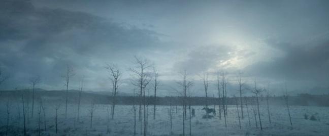 The Revenant 15 SC Snow big deal (WTF Watch The Film Saint Pauly)