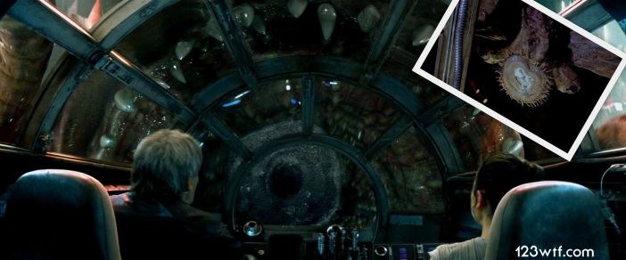 The Force Awakens 25 Collage Rathtar mynock (WTF Watch The Film Saint Pauly)