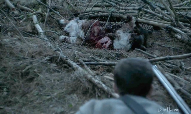 The Witch 13 SC That dog has a lot of guts (WTF Watch The Film Saint Pauly)