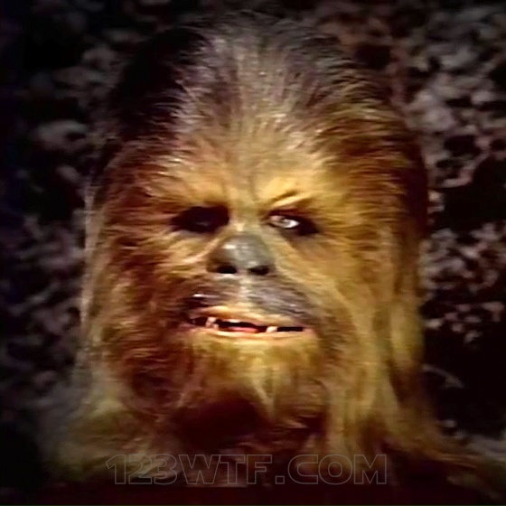 Star Wars Holiday Special 26 SC Ok, maybe there aren't Wookiee intellectuals 123WTF Saint Pauly