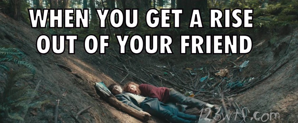 Swiss Army Man 38 meme Get a rise from your friend 123wtf Saint Pauly