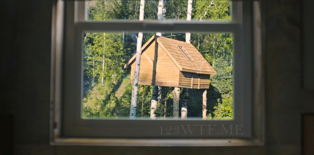 Hereditary 03 SC Tree houses are fore the birds WTF Watch The Film Saint Pauly